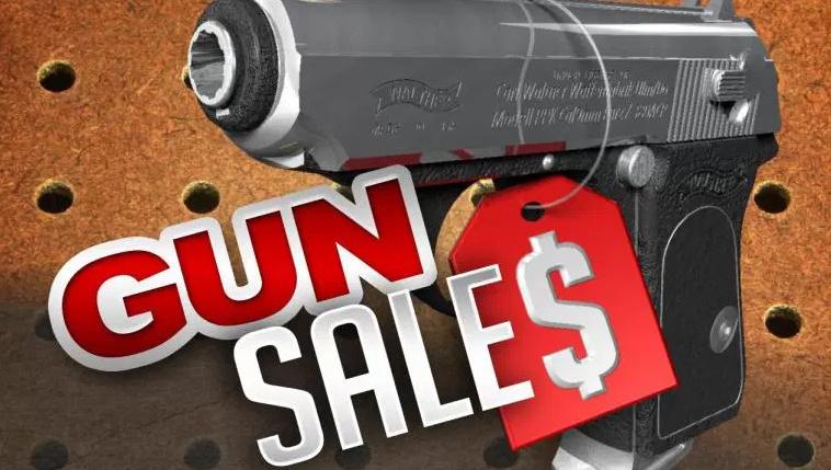 June Gun Sales Pulverize Previous Record