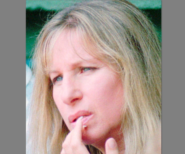 Noted Constitutional Scholar Barbra Streisand Urges Obama To Do This!