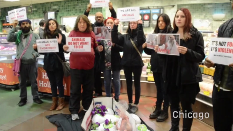Animal Rights Loonies Hold Funerals For Frozen Turkeys (Video)