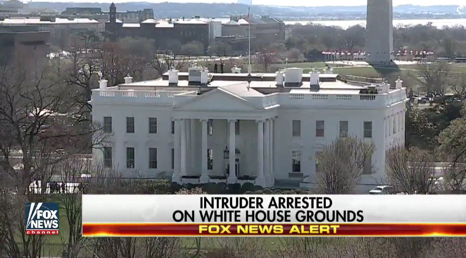 Secret Service Removed Sensors On WH Fence That Intruder Jumped, Limited Dogs They Might 'Hurt Someone'