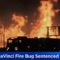 BLM Arsonist Sentenced To 15 Years, $100 Million Restitution (Video)