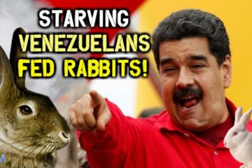 Socialist Venezuela Tells People To Eat Their Pets To Avoid Starvation (Video)