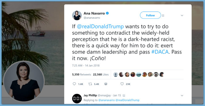 Ana Navarro Says Trump Must Pass DACA To Prove He Isn't Racist... Then Calls Him A Vulgar Word In Spanish