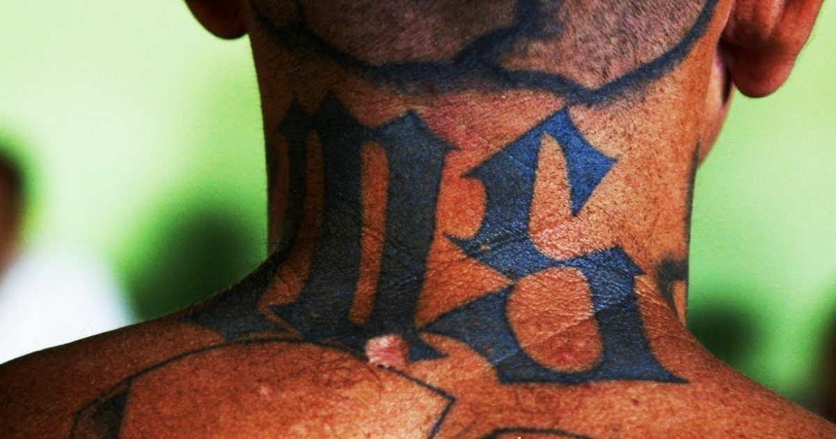 "MS-13 Gang Member Nicknamed ""Animal"" Only Gets To 40 Years For Murder"