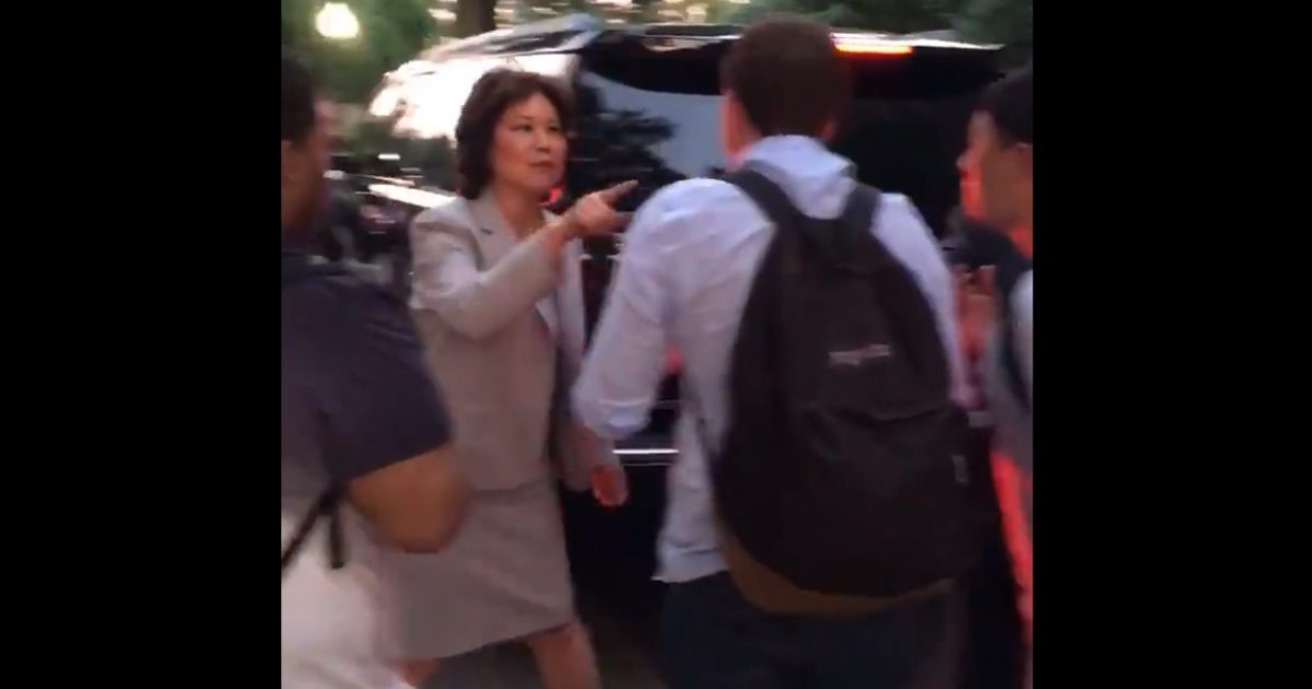 "Mitch McConnell's Wife Screams as UNHINGED Protesters Surround Mitch McConnell's Vehicle: ""Leave My Husband Alone!"" (Video)"