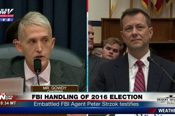 Gowdy Rips Strzok In Blistering Opening Statement (Video)