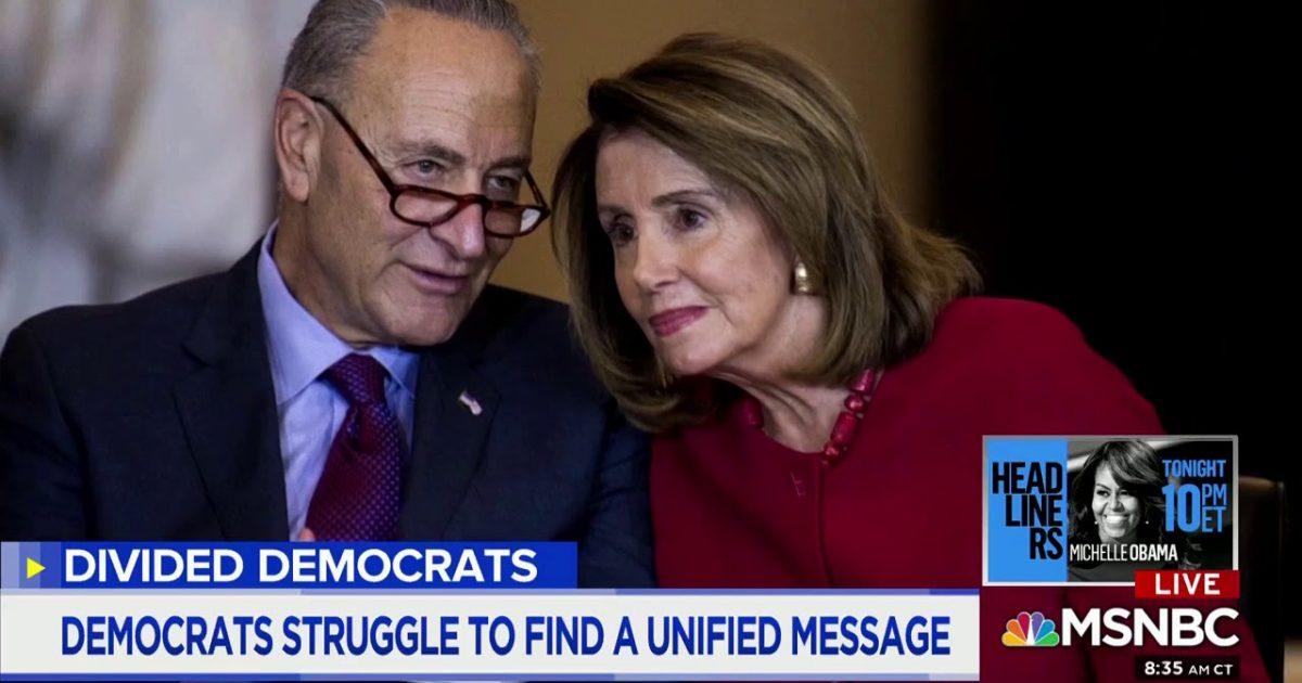 Liberal Activist Furious Chuck Schumer Should Resign Over Senate Defeats