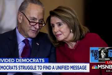 Liberal Activist Furious Chuck Schumer Should Resign Over Senate Defeats